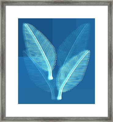 Blueprint Leaves Framed Print