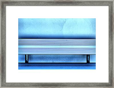 Blues From A Bench Framed Print