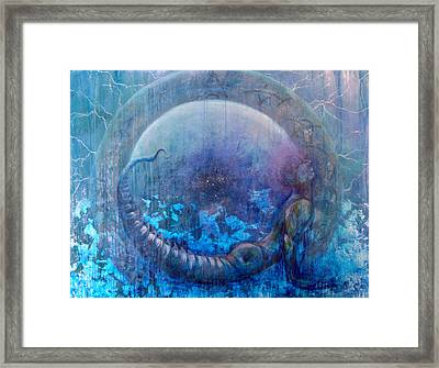 Bluestargate Framed Print