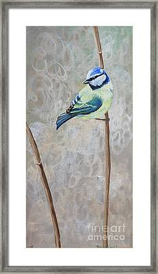 Bluetit Framed Print by Tracey Hunnewell