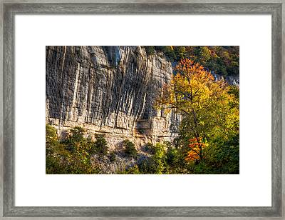 Bluff And Tree Framed Print