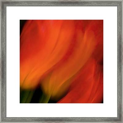 Blur De Lis Framed Print