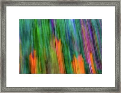 Blurred #2 Framed Print