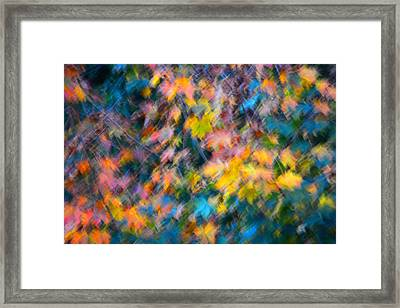 Blurred Leaf Abstract 3 Framed Print