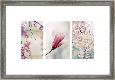 Framed Print featuring the photograph Blush Blossom Triptych by Jessica Jenney