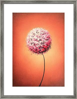 Blush Framed Print by Rachel Bingaman