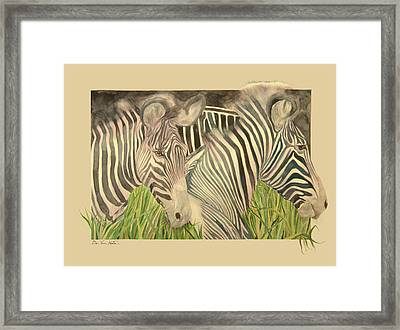 Zebra Blushing Stripes Framed Print