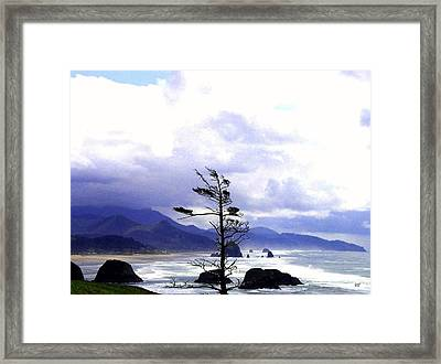 Blustery Framed Print by Will Borden