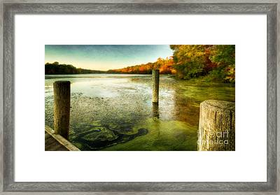Blydenberg Park In The Fall Framed Print