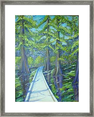 Boardwalk At Cypress Preserve Framed Print by Sheri Hubbard
