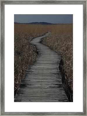 Boardwalk Framed Print by Eric Workman