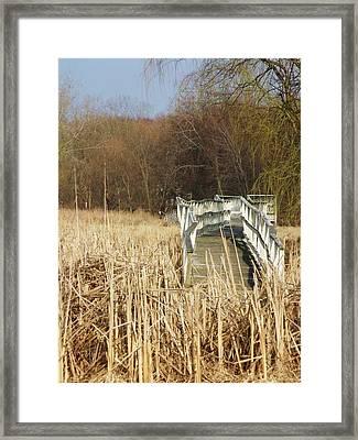 Boardwalk II Framed Print