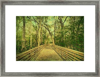 Framed Print featuring the photograph Boardwalk by Lewis Mann