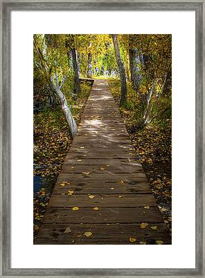 Boardwalk Over Convict Creek Framed Print