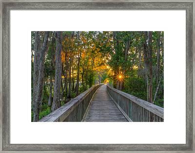 Boardwalk Sunset Framed Print by Lance Raab