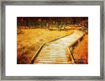 Boardwalk Through Vintage Wetlands Framed Print by Jorgo Photography - Wall Art Gallery