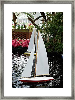 Boats At Phipps Conservatory Framed Print