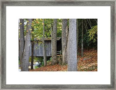 Bob White Framed Print by Eric Liller