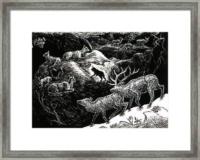 Bobcat Among Elk Framed Print by Dawn Senior-Trask