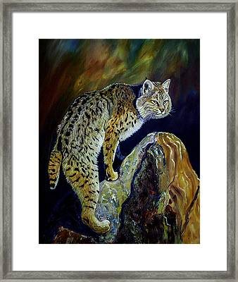 Bobcat At Sunset Original Oil Painting 16x20x1 Inch On Gallery Canvas Framed Print by Manuel Lopez