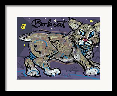 Lynx Rufus Drawings Framed Prints