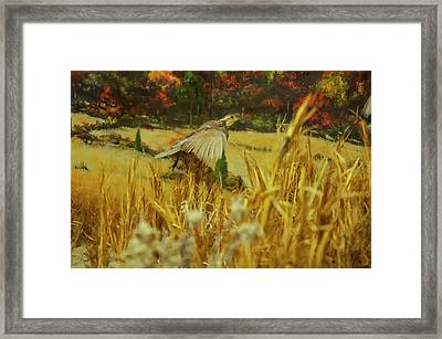 Framed Print featuring the digital art Bobwhite In Flight by Chris Flees