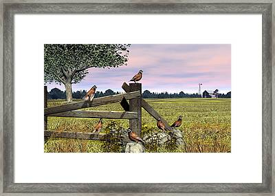 Bobwhite Quail Framed Print