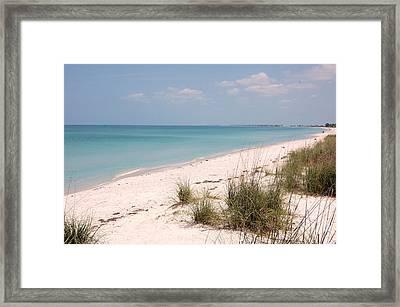 Boca Grande Beach State Park Framed Print by Steven Scott