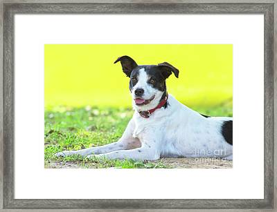 Bodeguero Andaluz Framed Print by Angela Doelling AD DESIGN Photo and PhotoArt