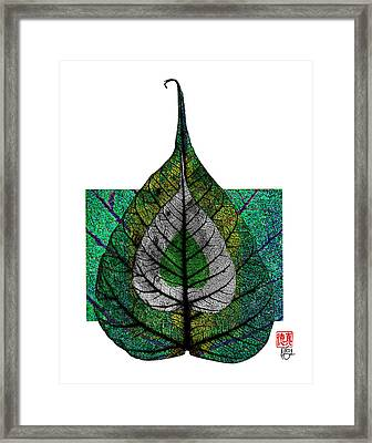 Bodhi Leaf Framed Print by Peter Cutler