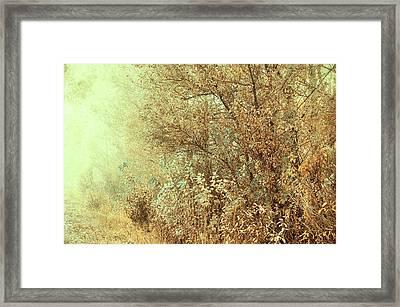 Bohemian Autumn Framed Print