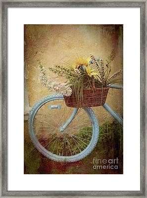 Bohemian Bicycle Framed Print