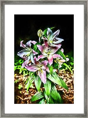 Bohemian Lilies Framed Print