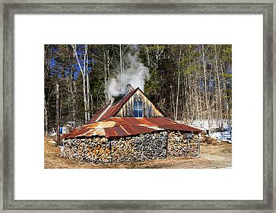 Boiling Sap To Make Maple Syrup  Framed Print