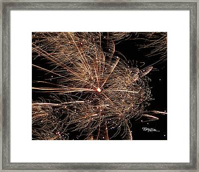 Framed Print featuring the photograph Bold Burst #0711 by Barbara Tristan
