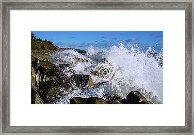 Bold Coast Of Down East Maine Framed Print by Marty Saccone