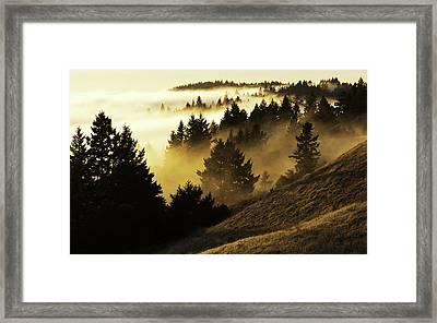 Bolinas Ridge Framed Print by Lance Kuehne