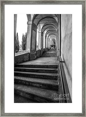 Bologna Canvas - Stairways Arcadesto San Luca Prints  Framed Print by Luca Lorenzelli