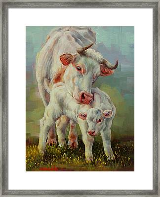 Bonded Cow And Calf Framed Print