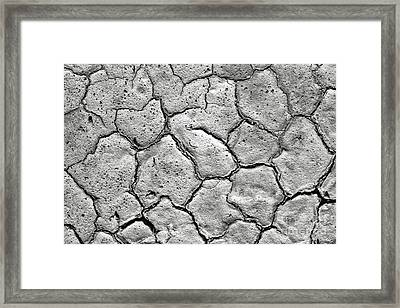 Framed Print featuring the photograph Bone Dry  by Olivier Le Queinec