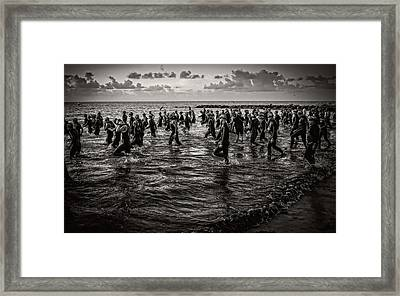 Bone Island Triathletes Framed Print