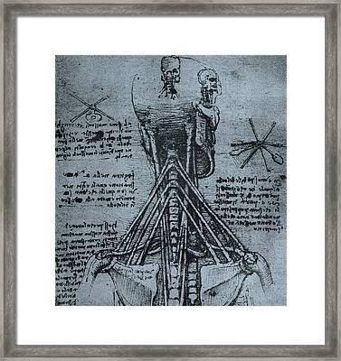 Bone Structure Of The Human Neck And Shoulder Framed Print by Leonardo Da Vinci