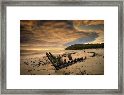 Bones, Ada K. Damon Framed Print
