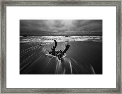 Boneyard Beach At Folly Beach Framed Print