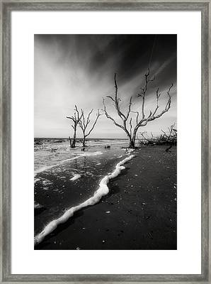 Framed Print featuring the photograph Boneyard Beach I by Steven Ainsworth