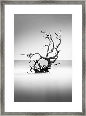 Boneyard Beach X Framed Print