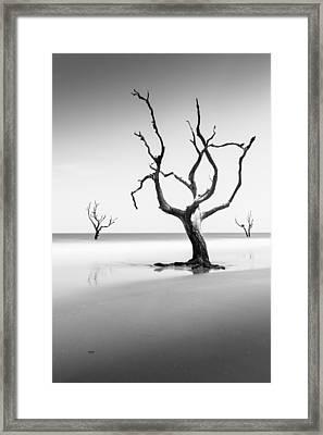 Boneyard Beach Xiii Framed Print