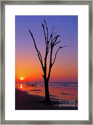 Boneyard Framed Print by Steven Dillon