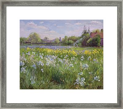 Bonfire And Iris Field Framed Print by Timothy Easton