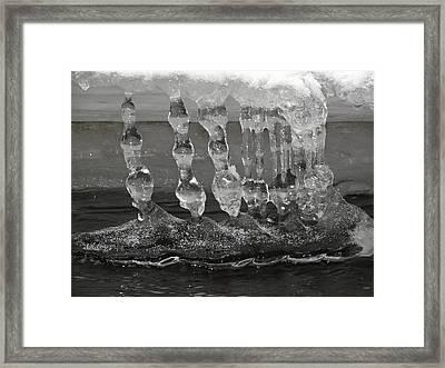 Bongles Framed Print